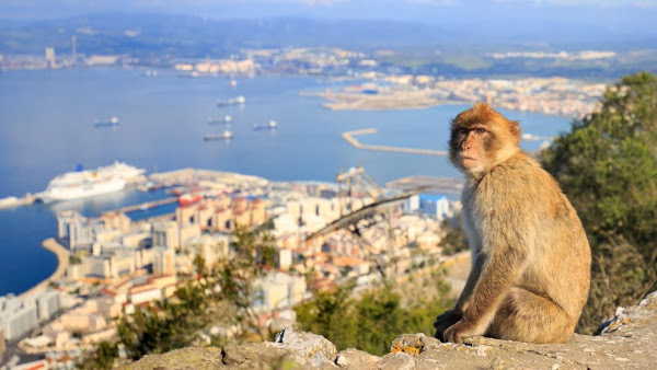 day-trips-you-cant-miss-in-marbella-and-surroundings-7