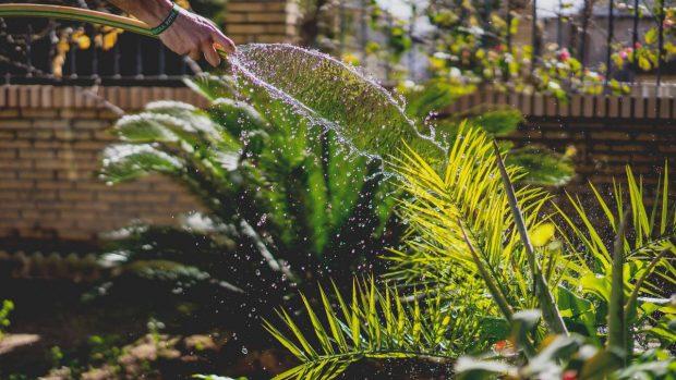 jardines-bien-cuidados-para-el-home-staging-en-marbella