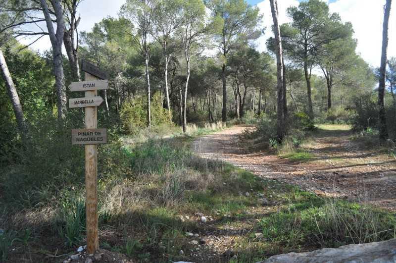 Rutas de senderismo en Marbella - Nagüeles Buenavista Los Monjes